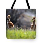 Spring Chicks In The Sunshine Tote Bag