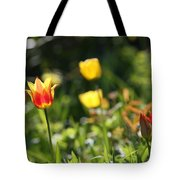 Spring Colour Tote Bag