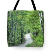 Spring Country Road Tote Bag