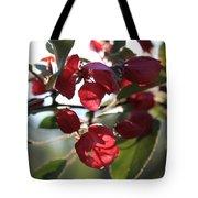 Spring Crabapple Blossom Tote Bag