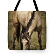 Spring Creek Basin Wild Horse Grazing Tote Bag
