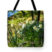 Spring Daffodils.park Keukenhof Tote Bag