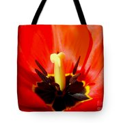 Red Tulip In Spring Tote Bag