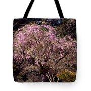 Spring Day In Park Tote Bag