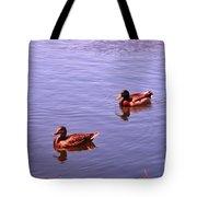 Spring Ducks Tote Bag