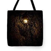 Spring Evening Golden Glow Tote Bag