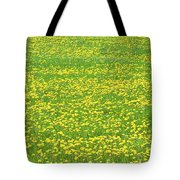 Spring Farm Panorama With Dandelion Bloom In Maine Canvas Poster Print Tote Bag