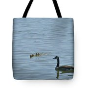 Spring Flotilla With Guardians Tote Bag