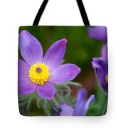 Spring Flowers 1. Flowers Of Holland Tote Bag