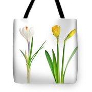 Spring Flowers  Tote Bag by Elena Elisseeva