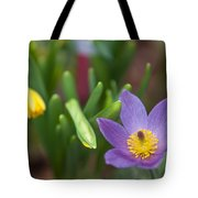 Spring Flowers. Flowers Of Holland Tote Bag