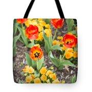 Spring Flowers No. 6 Tote Bag