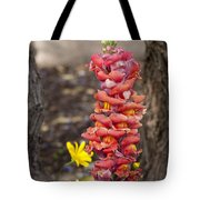 Spring Framed Tote Bag