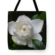 Spring Gardenia 2013 Tote Bag