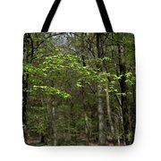 Spring Greenery Tote Bag