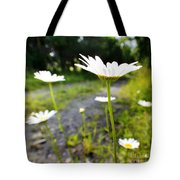 Spring In Campbell Hall Tote Bag
