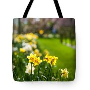 Spring In Holland. Garden Keukenhof Tote Bag by Jenny Rainbow