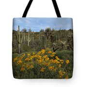 Spring In The Superstition Wilderness Tote Bag