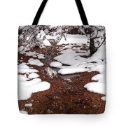Spring Into Winter Tote Bag