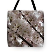 Spring Is Beautiful - A Cloud Of Pastel Pink Blossoms Tote Bag