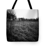 Spring Is Near Holga Photography Tote Bag