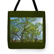Spring Leaves In The Willows Tote Bag