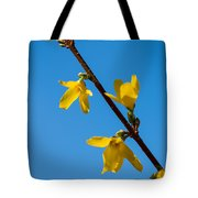 Spring Lights Tote Bag