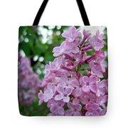 Spring Lilac Tote Bag