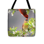 Cardinal Spring Love Tote Bag