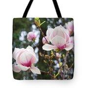 Spring Magnolia Tree Flowers Pink White Tote Bag