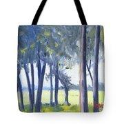 Spring Marsh From Deerfield Road Tote Bag