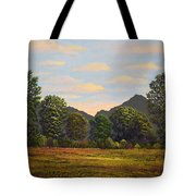 Spring Meadow At Sutter Buttes Tote Bag