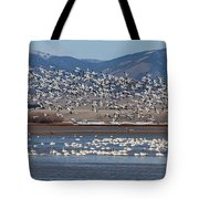 Spring Migration Tote Bag