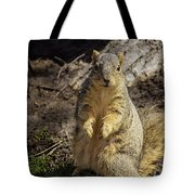 Spring Nature At Spnc Tote Bag
