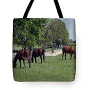 Spring Paddock Tote Bag