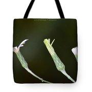 Spring Phase Tote Bag