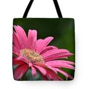 Spring Pink 2014 Tote Bag