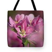 Spring Pink... Tote Bag