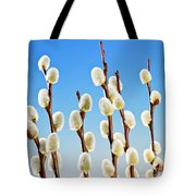 Spring Pussy Willows Tote Bag by Elena Elisseeva