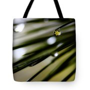 Spring Rain On The Pines Tote Bag