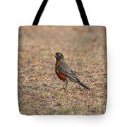 Spring Robin 2014 Tote Bag