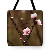 Spring Showers Tote Bag