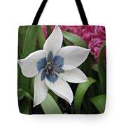 Spring Star Tote Bag