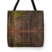 Spring Stillness Tote Bag
