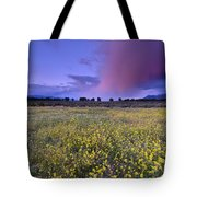 Spring Storm At Andalucia Tote Bag