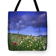 Spring Sunset Windy Days Tote Bag