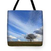 Spring Sunshine Epsom Downs Surrey Tote Bag