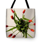 Spring Thaw Tote Bag by Luke Moore