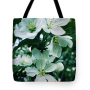 Spring Time Blossoms Tote Bag