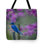 Spring Time Blue Bird Tote Bag